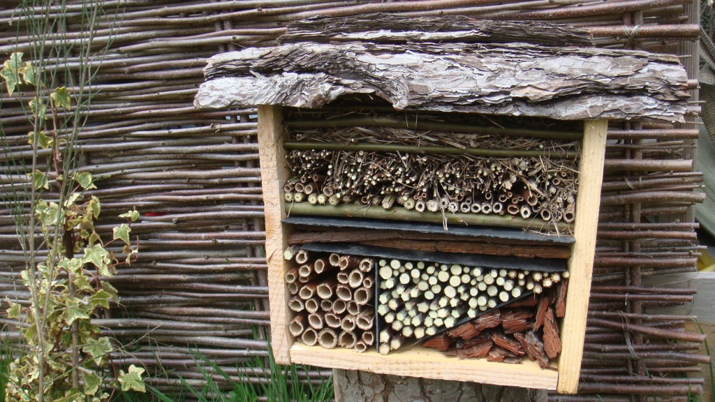 La maison d insectes les jardins de pertulisane for Abeilles dans la maison